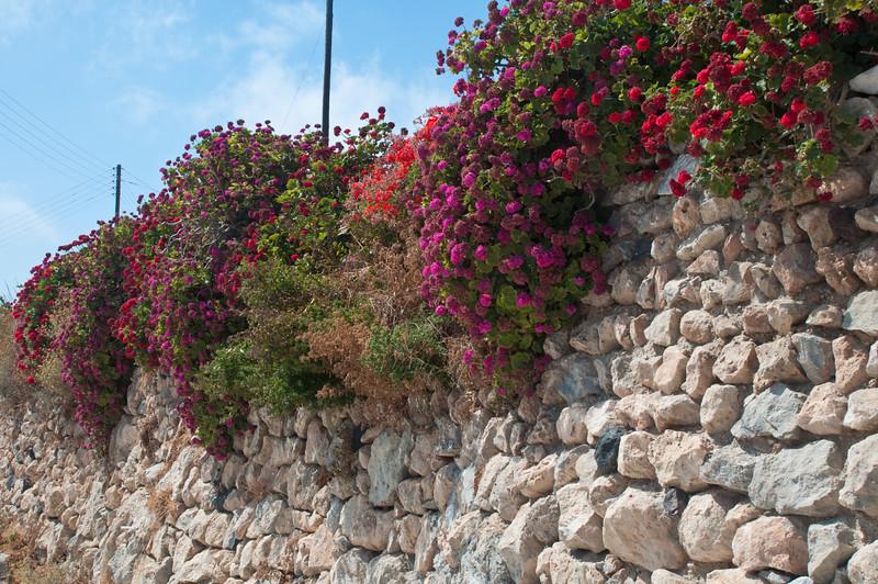 Santorini-201.jpg