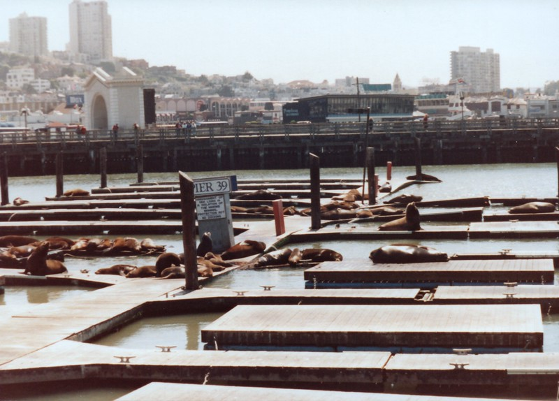 San_Francisco_1991_0006_a.jpg