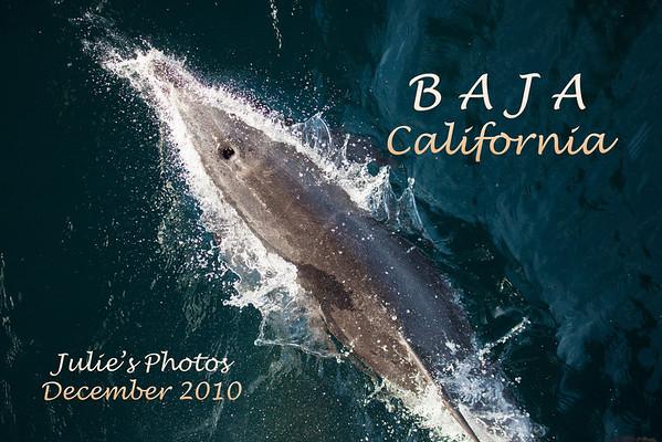 Baja 2010 (Julie)
