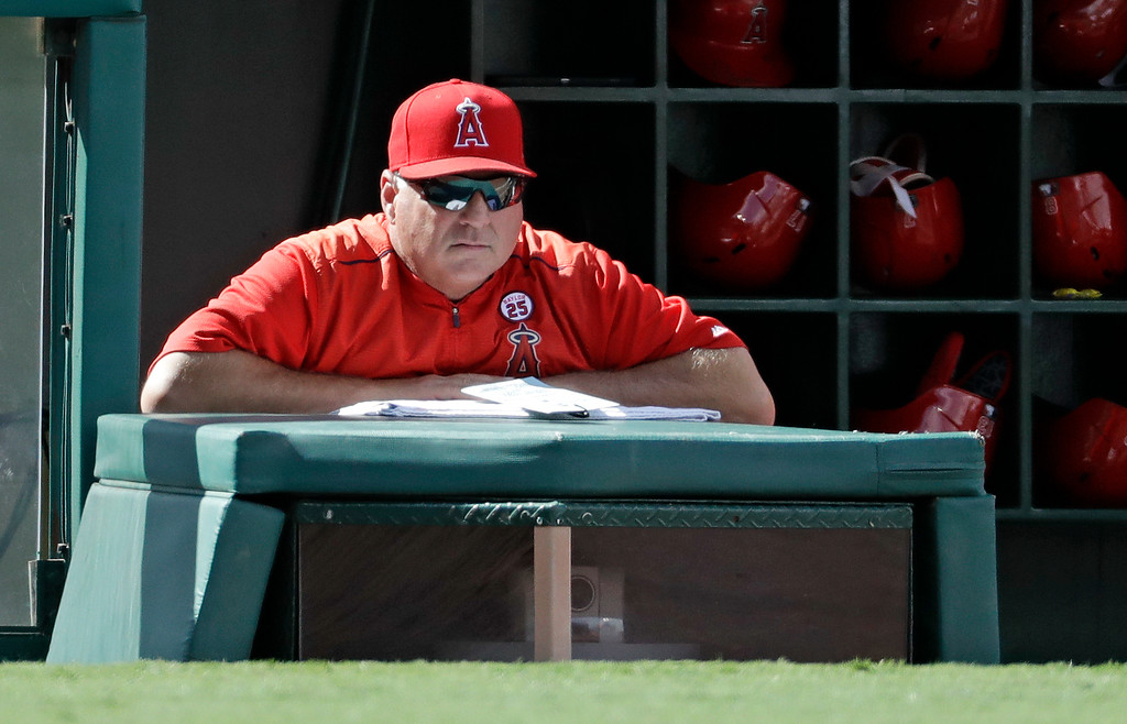 . Los Angeles Angels manager Mike Scioscia watches during the sixth inning of a baseball game against the Cleveland Indians in Anaheim, Calif., Thursday, Sept. 21, 2017. (AP Photo/Chris Carlson)