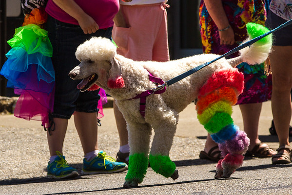 Olympia Pride 2015
