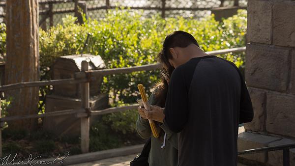 Disneyland Resort, Disneyland, New Orleans Square, New, Orleans, Square, Pirates Of The Caribbean, Pirates, Caribbean, Gold Churro, Gold, Churro