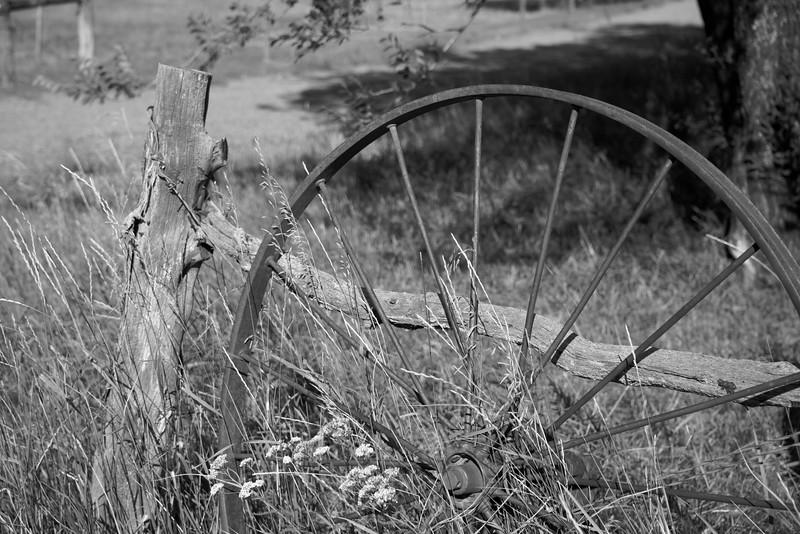Wagon wheel.jpg (1 of 1).jpg