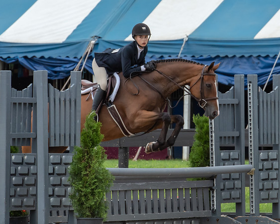 Princeton Horse Show July 2018