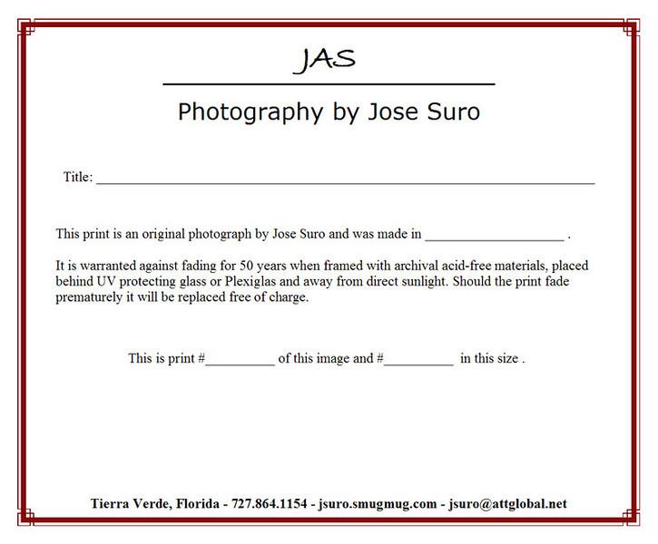 print_certificate.jpg