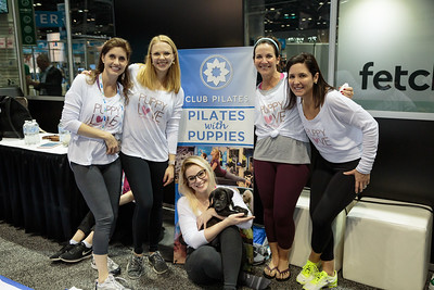 Pilates With Puppies