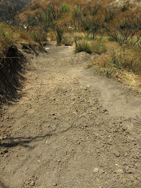 20100710056-Doc Larsen Trailwork CORBA.JPG
