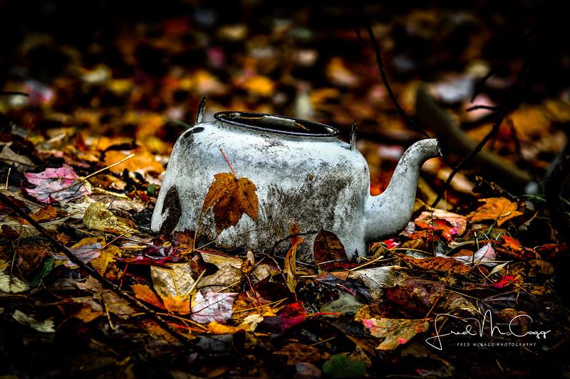 teapot-0029.JPG