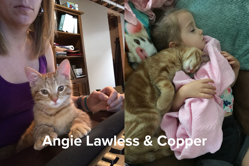 Angie Lawless - Copper.jpg