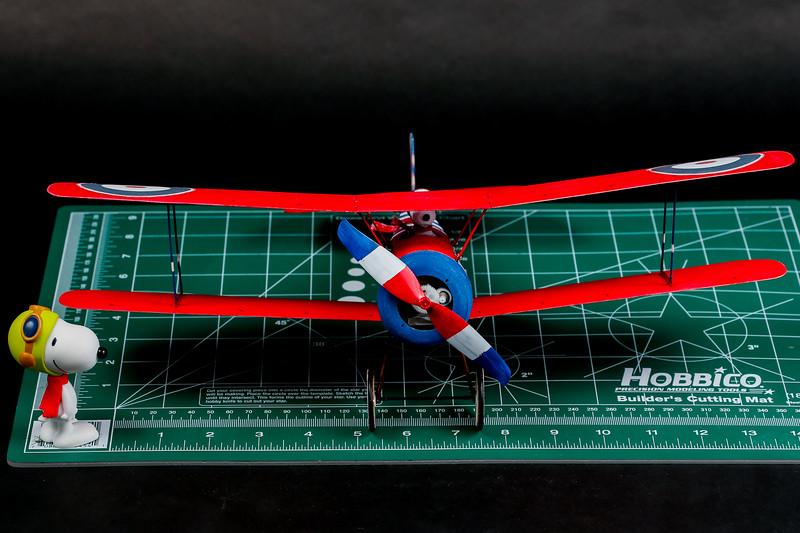 RC-Sopwith-Pup-70.jpg