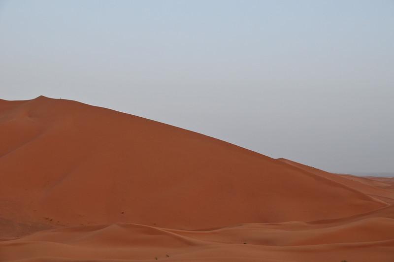 day4-SaharaCamp-46.jpg