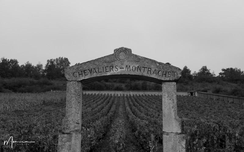 2019-10 - Burgundy Vacation-2756_edit.jpg