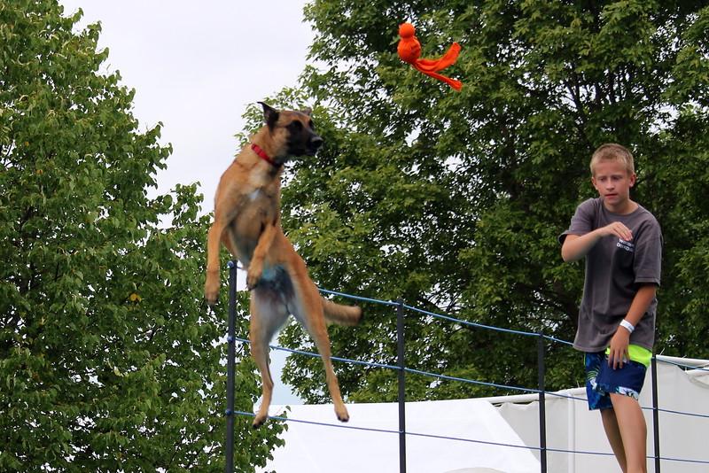 Dock Dogs at Fair-078.JPG