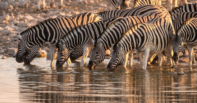 20130601-2-Namibia377.jpg