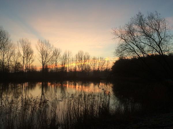 2016-11-26-polder