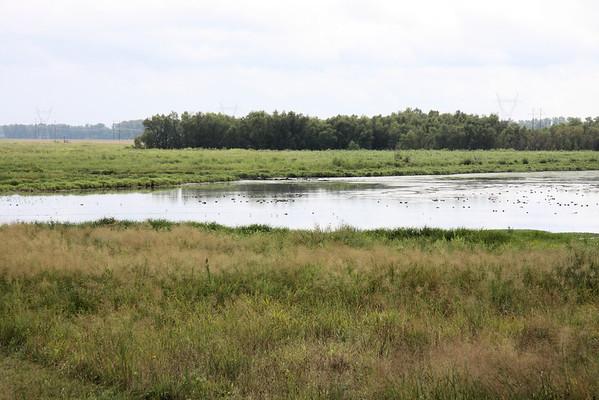 2012-09-01 Riverlands Migratory Bird Sanctuary