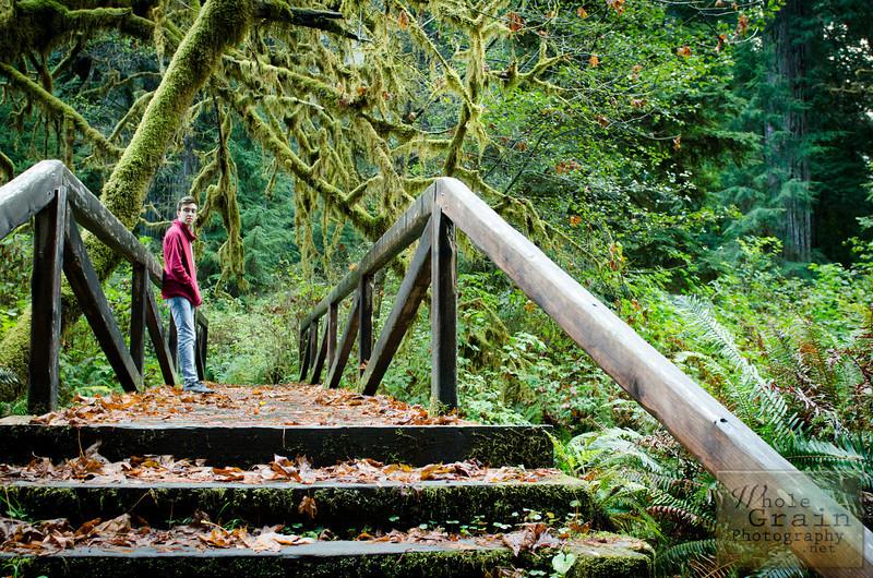 20141015_Redwoods_0034.jpg