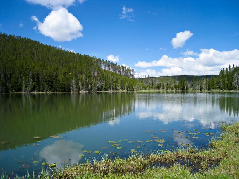 Small lake off Grand Loop Rd near Roaring Mtn