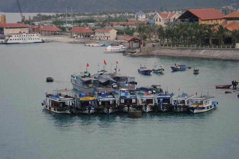 Dive Boats on Moorings.jpg