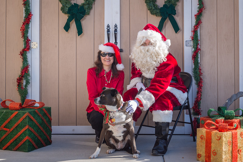 Pet Pictures With Santa-45.jpg