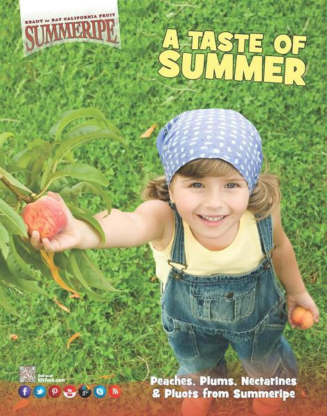 Taste of Summer Poster 2014.jpg