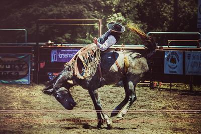 2010 Bareback Riding