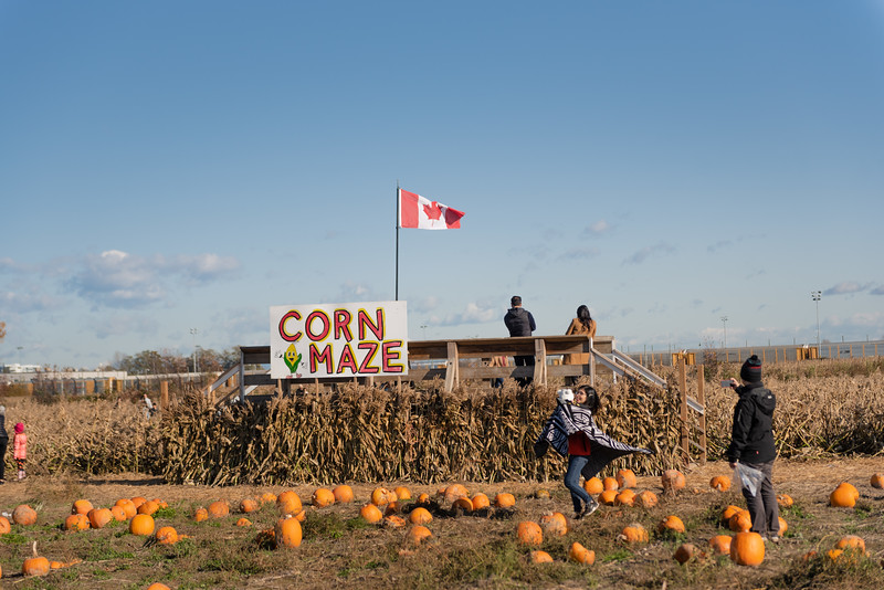 PumpkinPatch2019_016.jpg