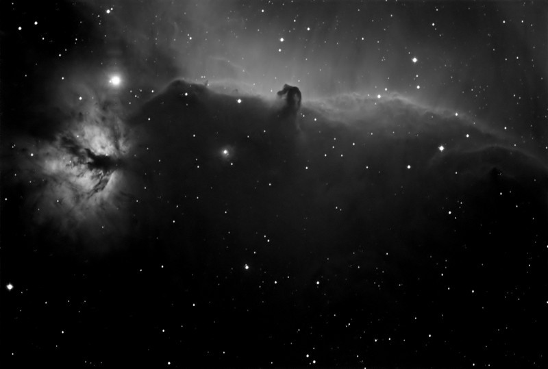 The Horse Head and Flame nebulas in hydrogen alpha light.