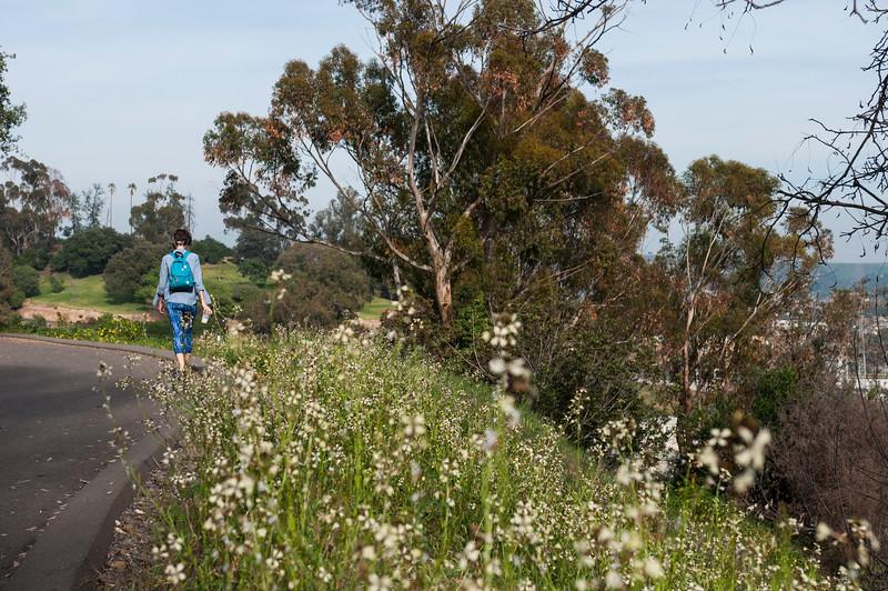 Elysian Park Loop Walk