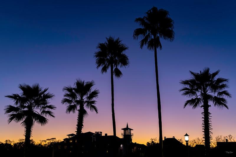 """Good Night Florida"""
