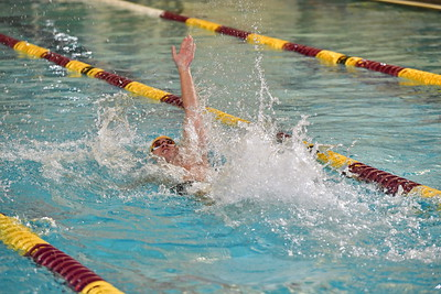 Swimming and Diving Action Shots