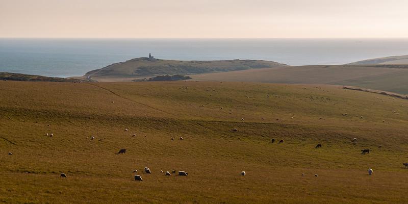 South Downs hills at Beachy Head