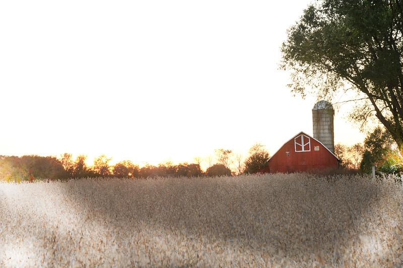 Richwood Barn1.jpg