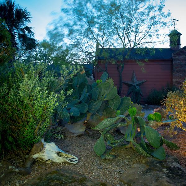 htx-cactus-space035.jpg