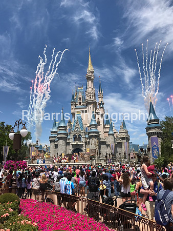 Our DisneyWorld Trip Photos (April 2017)