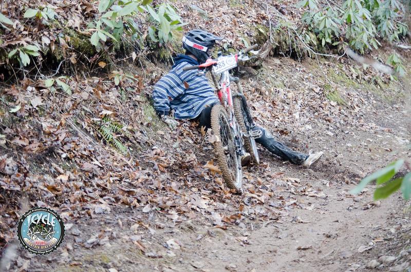 2015 Icycle-60.jpg