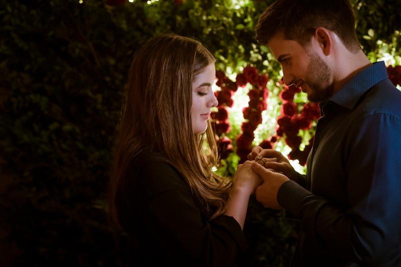 Compromiso de Nicole y Alejandro