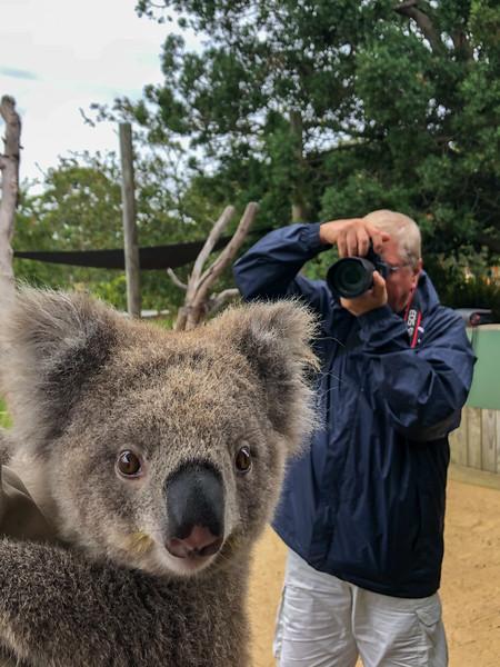 Symbio Wildlife Park, Helensburgh, New South Wales, Australia - 2020