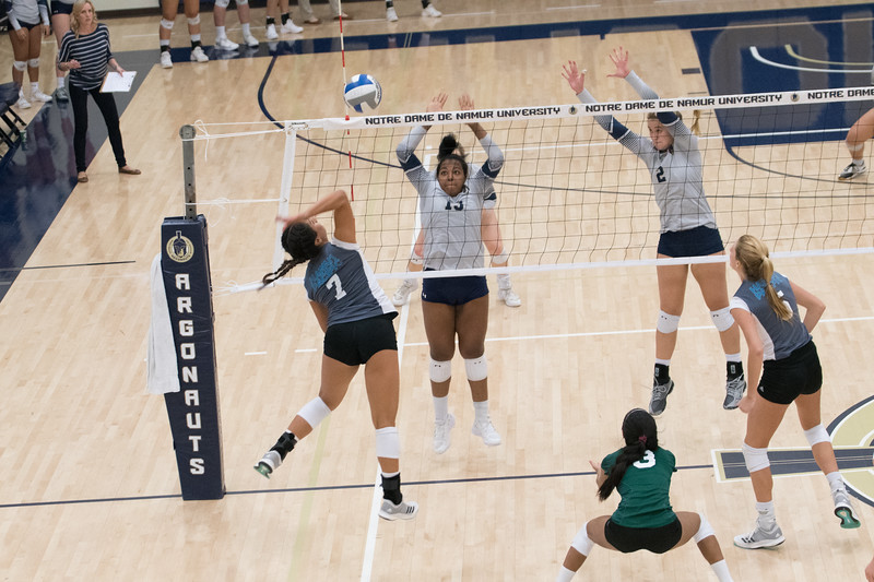 HPU Volleyball-92618.jpg