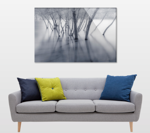 influence-couch-nature-fine art.png
