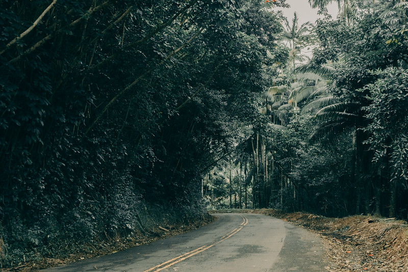 Hawaii20-374.jpg