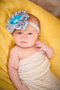 Harper | Newborn
