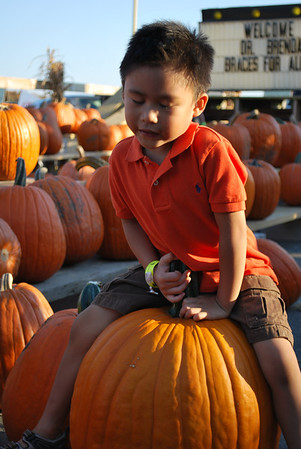 pumpkin patch with joshua
