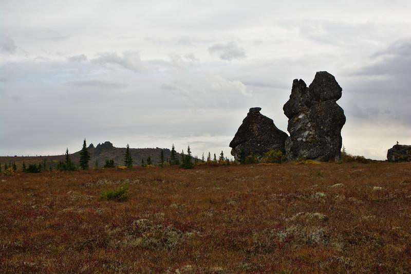 Granite in the Tundra