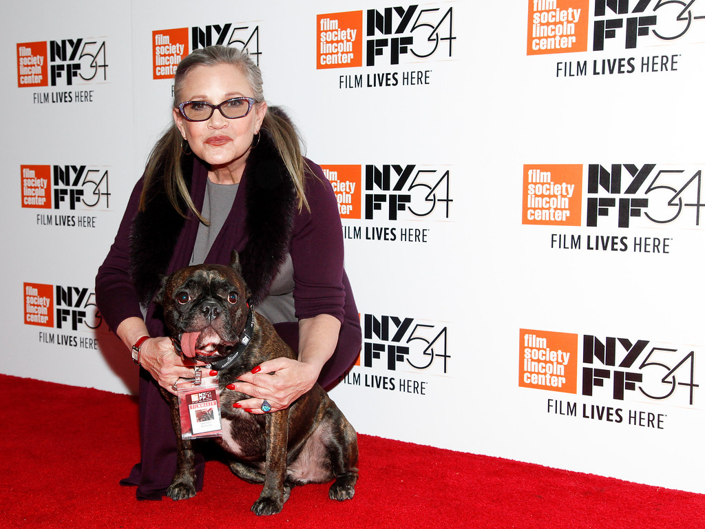 """. Actress Carrie Fisher attends a special screening of, \""""Bright Lights: Starring Carrie Fisher and Debbie Reynolds\"""", at Alice Tully Hall on Monday, Oct. 10, 2016, in New York. (Photo by Andy Kropa/Invision/AP)"""