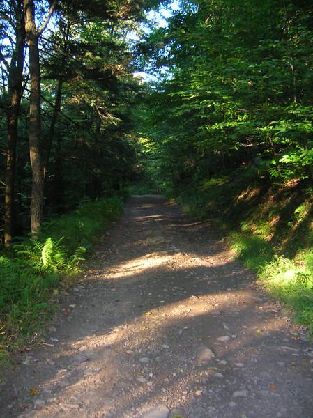 Bear Run ORV Trail