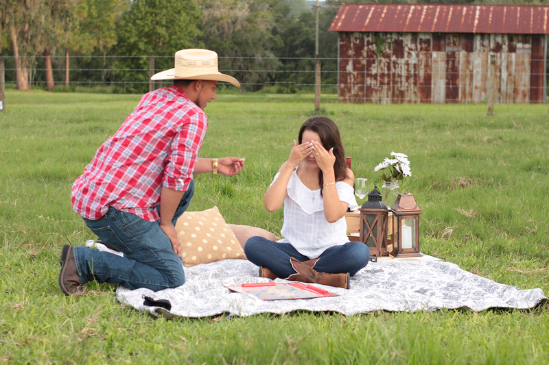 Surprise-Picnic-Engagement-Scrable-Game-Will-You-Marry-Me-Sunset-Open-Field-Rustic-Photo-Photography-By-Laina-4.jpg