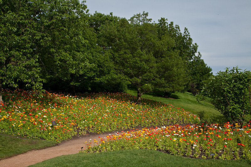 Botanic_Garden13-0604.jpg