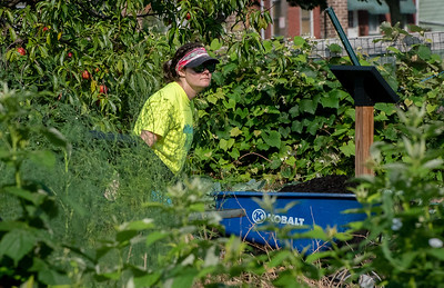 Youth Ministry Volunteers At Cottage Hill Garden