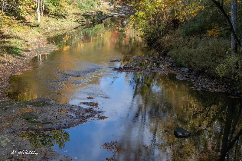 Black River 101320-4.jpg